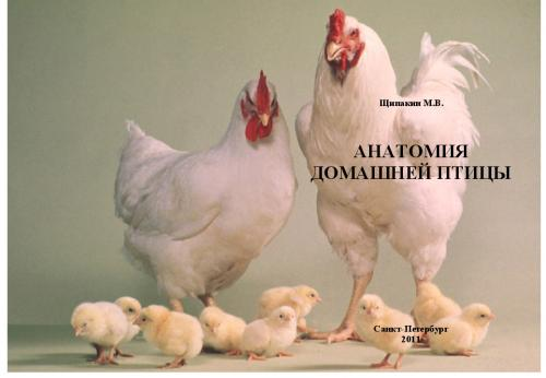 Щипакин Анатомия домашней птицы 2011г.